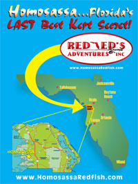 View Florida Map